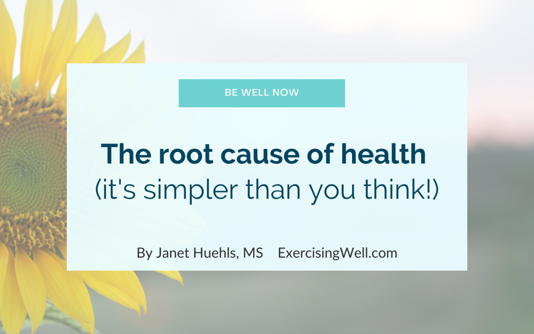 The root cause of health (it's more simple than you think!)